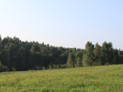 Typical countryside view of Belarus